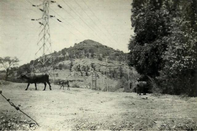 BAROMETER HILL FROM THE GATE OF ST. STANISLAUS VILLA